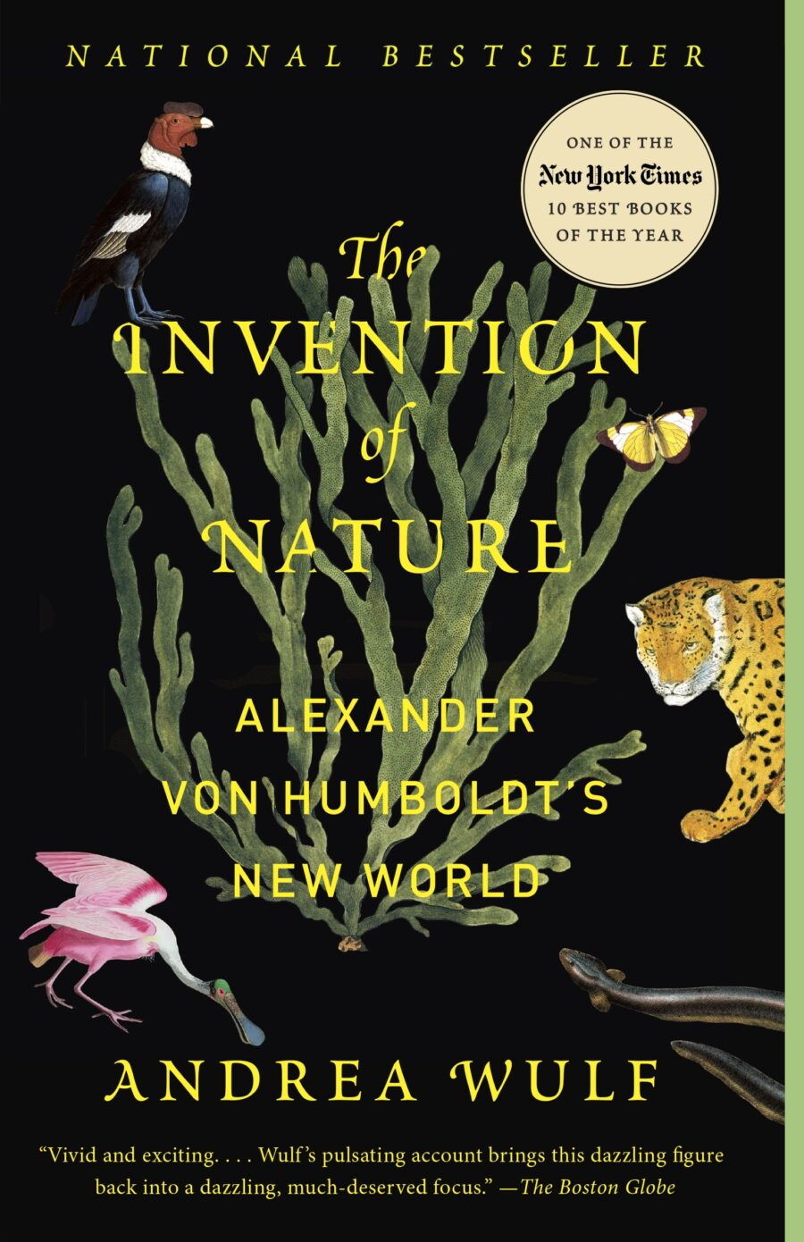the-invention-of-nature-9780345806291