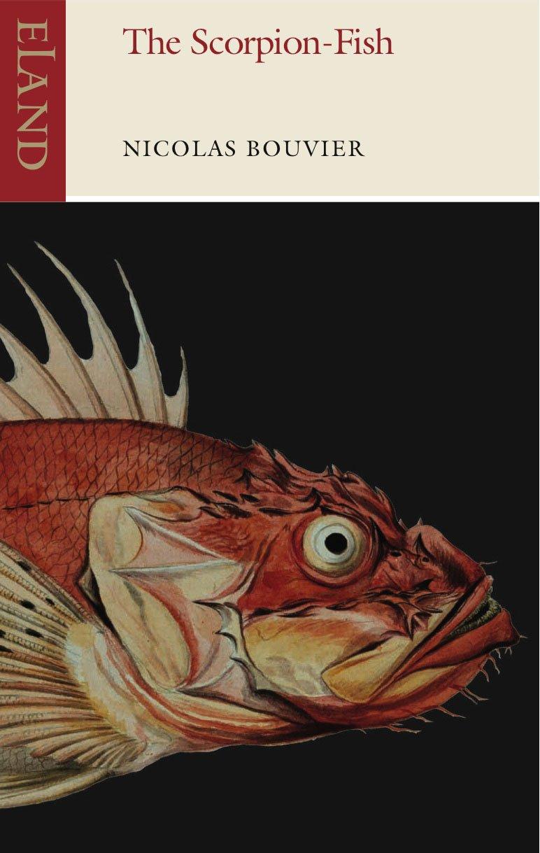 The-Scorpion-Fish-9781780600444
